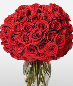 Scarlet Sophistication-Red,Rose,Bouquet