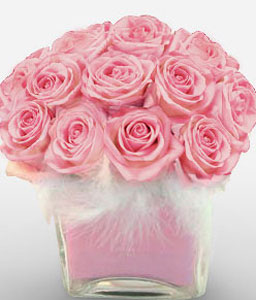 Plettenberg Trends-Pink,Rose,Arrangement