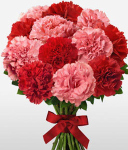 Double Up<Br><Font Color=Red>Red and Pink Carnation Bouquet</Font>