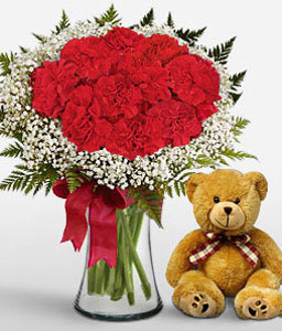 Bella Sweetheart - Red Carnations + Teddy-Red,Carnation,Bouquet