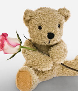 Be Mine-Pink,Rose,Teddy,Bouquet
