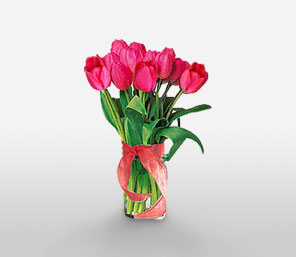 Pink Love-Pink,Tulip,Bouquet