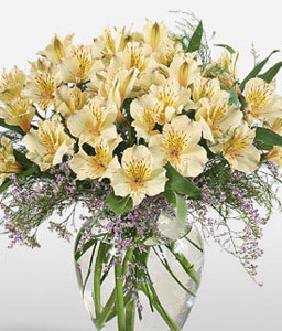 Peruvian Dream-Yellow,Alstroemeria,Arrangement,Bouquet