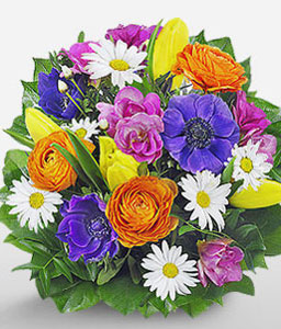 Neues Leben-Blue,Green,Mixed,Orange,Pink,White,Yellow,Daisy,Freesia,Gerbera,Mixed Flower,Rose,Tulip,Bouquet