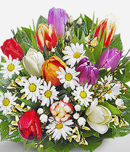 Daisies And Tulips-Mixed,Orange,Purple,Red,White,Daisy,Tulip,Bouquet