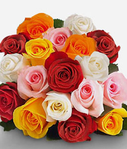 Mazatlan Carnival-Mixed,Pink,Red,White,Yellow,Rose,Bouquet