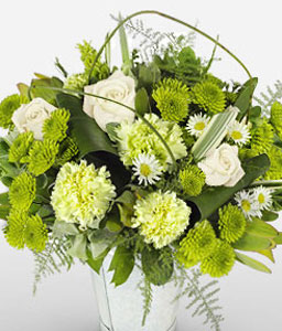 Franschhoek Fancy-Green,White,Carnation,Rose,Arrangement