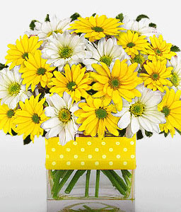 Good Morning Sunshine-White,Yellow,Daisy,Gerbera,Bouquet