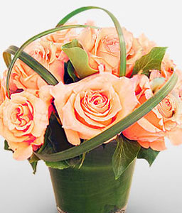 Glowing Peach Roses-Peach,Rose,Arrangement