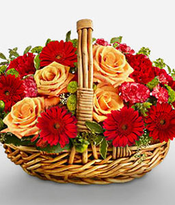 Brilliant Blooms-Mixed,Orange,Red,Carnation,Gerbera,Mixed Flower,Rose,Arrangement,Basket