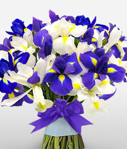 Spectacular Ocean-Blue,White,Iris,Bouquet