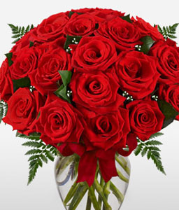 24 Red Roses-Red,Rose,Bouquet