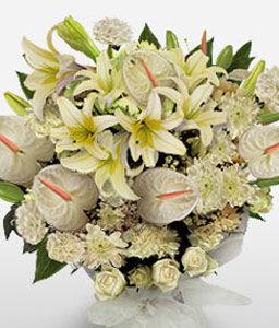 White Frost-White,Anthuriums,Carnation,Chrysanthemum,Mixed Flower,Bouquet
