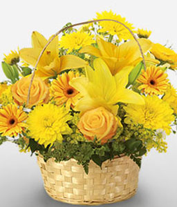 Seychelles Stories-Yellow,Carnation,Chrysanthemum,Gerbera,Lily,Mixed Flower,Rose,Arrangement,Basket