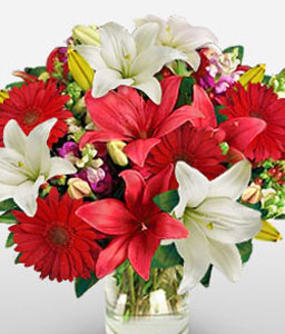Festive Lilies-Red,White,Daisy,Gerbera,Lily,Bouquet