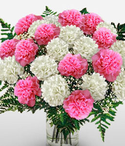 Mothers Day Arrangement-Pink,White,Carnation,Bouquet