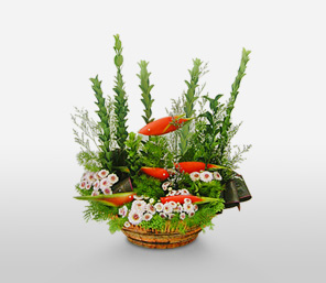 Ocean Elegance-Green,Mixed,Orange,Mixed Flower,Arrangement,Basket