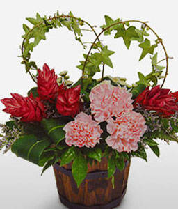 Park Club-Green,Pink,Red,Carnation,Arrangement