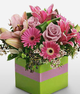 Manhattan Square-Mixed,Pink,Rose,Mixed Flower,Lily,Gerbera,Arrangement