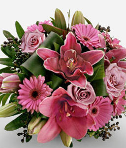 Dreamers Dream-Pink,Daisy,Gerbera,Lily,Rose,Bouquet