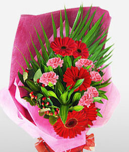 Delight-Pink,Red,Carnation,Gerbera,Bouquet