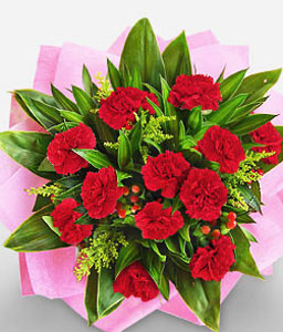 Carnation Adoration-Pink,Red,Carnation,Arrangement