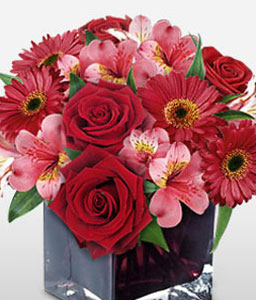 Season Pomp-Pink,Red,Rose,Mixed Flower,Gerbera,Alstroemeria,Arrangement