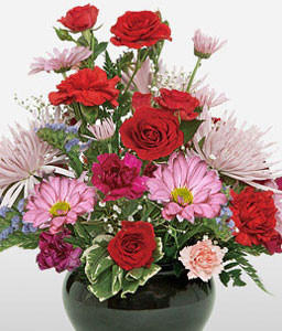 Pretty Palette-Mixed,Pink,Red,Carnation,Gerbera,Mixed Flower,Rose,Arrangement