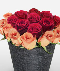 Crimson Sunset-Mixed,Red,Rose,Arrangement