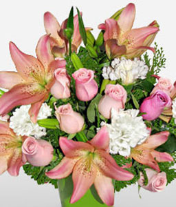 Cabo Frio-Peach,Pink,White,Carnation,Lily,Rose,Arrangement