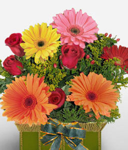 Beau Reveur-Mixed,Orange,Pink,Red,Yellow,Daisy,Gerbera,Rose,Arrangement