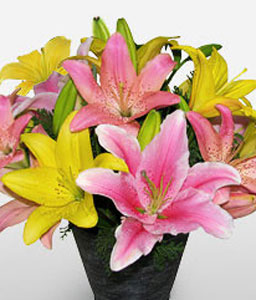 Cheerful Lilies-Mixed,Pink,Yellow,Lily,Mixed Flower,Arrangement