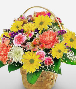 Simple Pleasures-Mixed,Orange,Pink,Yellow,Mixed Flower,Gerbera,Chrysanthemum,Carnation,Alstroemeria,Arrangement,Basket