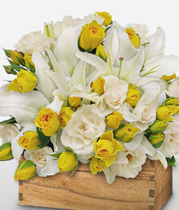Beautiful Beginnings-White,Yellow,Lily,Rose,Arrangement
