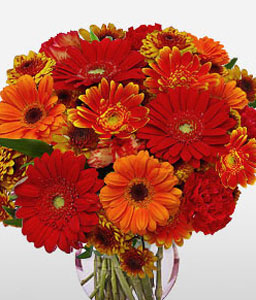 Sydney Sunset-Orange,Red,Chrysanthemum,Daisy,Gerbera,Arrangement