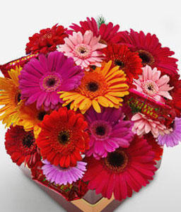 Kakadu-Orange,Pink,Red,Gerbera,Arrangement