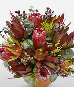 Australian Adventure-Mixed,Mixed Flower,Arrangement