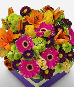 Queensland-Green,Mixed,Orange,Pink,Red,Chrysanthemum,Daisy,Gerbera,Lily,Mixed Flower,Rose,Arrangement