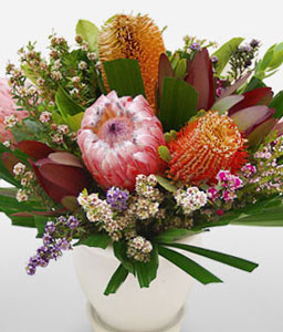 Wild Tasmania-Mixed,Mixed Flower,Arrangement