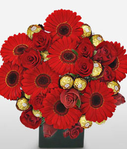 Scrumptious Red-Red,Daisy,Gerbera,Rose,Arrangement