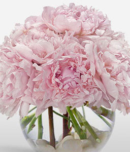 Precious Peonies-Pink,Mixed Flower,Arrangement