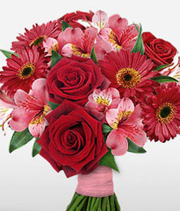 Ruby Affection-Pink,Red,Daisy,Gerbera,Lily,Rose,Bouquet