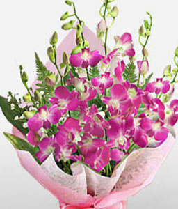Purple Orchid Bouquet-Pink,Orchid,Bouquet