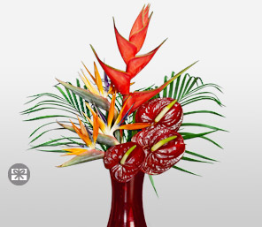 Paradiso-Orange,Red,Anthuriums,Birds of Paradise,Mixed Flower,Arrangement