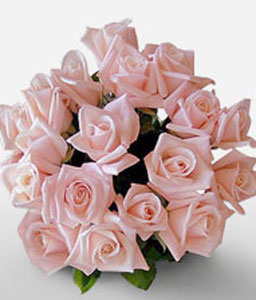 18 Peach Roses-Peach,Rose,Bouquet