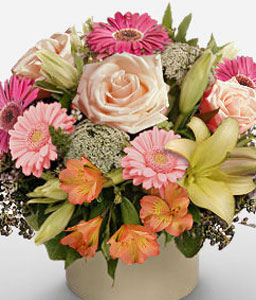 Cosmo-Peach,Pink,Gerbera,Lily,Rose,Arrangement