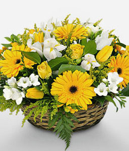Sultry Glow-White,Yellow,Daisy,Gerbera,Rose,Basket