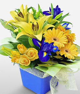 Vibrant Charms-Blue,Yellow,Daisy,Gerbera,Iris,Lily,Mixed Flower,Rose,Arrangement