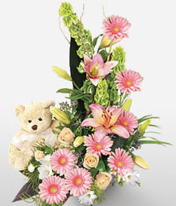 Cuddly Blooms-Pink,Teddy,Lily,Gerbera,Daisy,Arrangement
