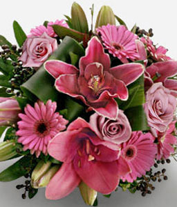 Dreamers Heaven-Pink,Daisy,Gerbera,Lily,Rose,Bouquet